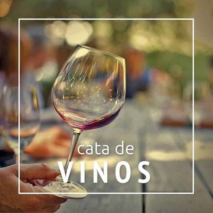 banner-vinos