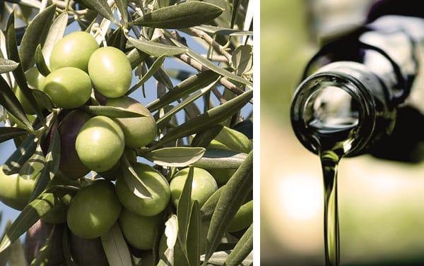 aceite-olivas
